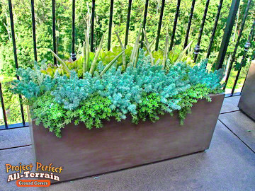 All Terain GroundCover Container2016350
