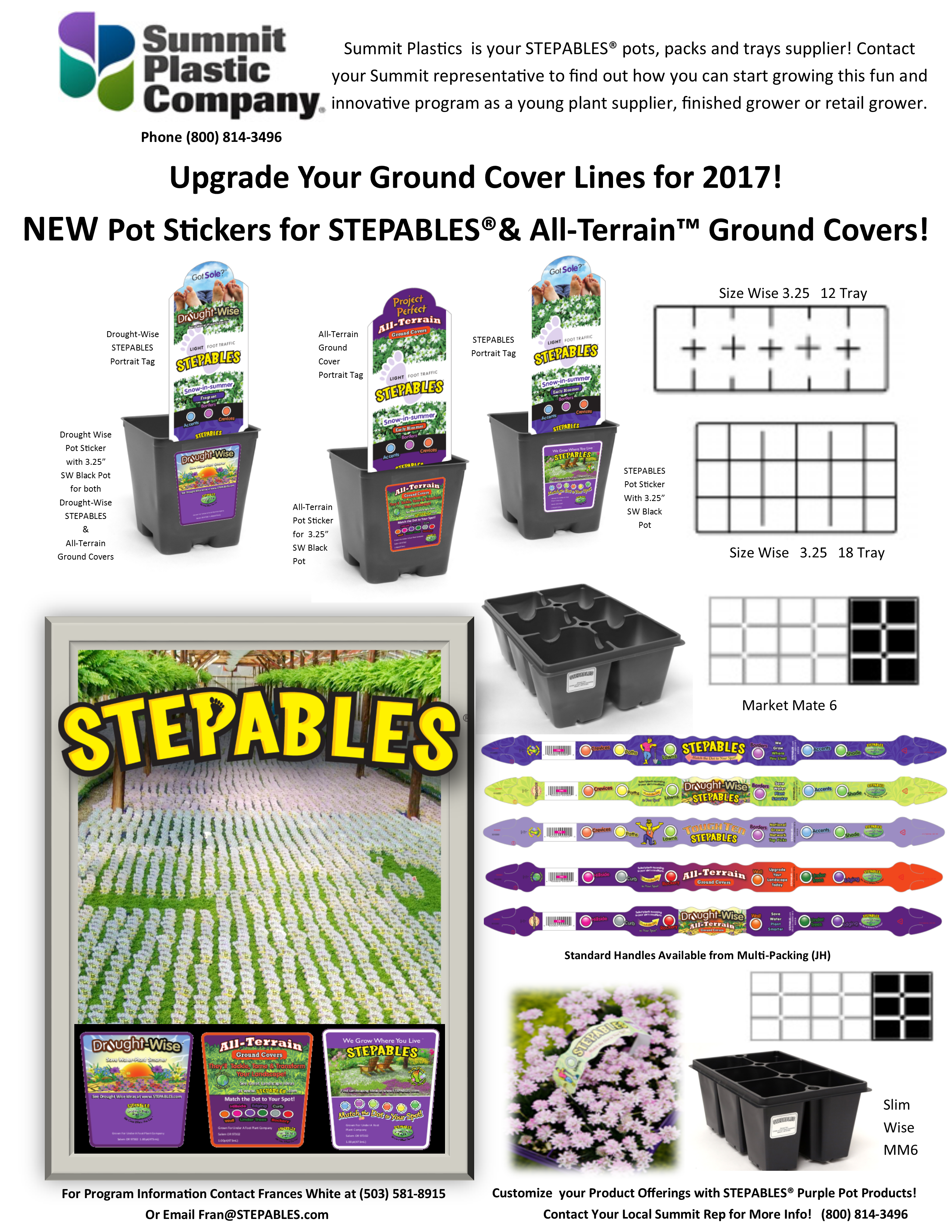 STEPABLES Summit Plastic Co Sales sheet 2016-17.png
